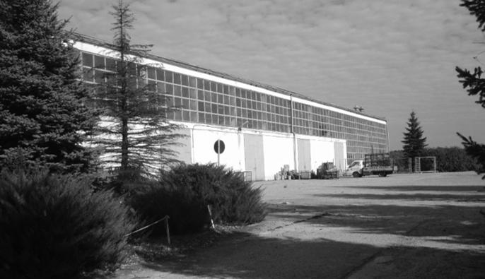 firma Vidawo w 2008 roku